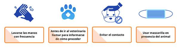 Consejos básicos para el trato con animales si padeces Covid-19