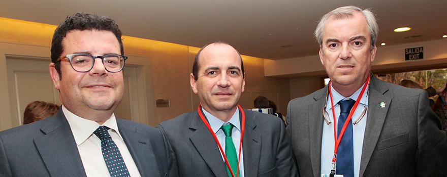 Leal debemos compartir experiencias con solidaridad y for Alfonso dominguez madrid