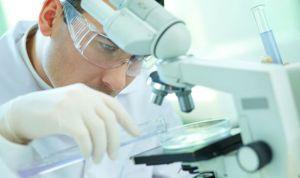 'Clostridium difficile' germina en ambientes ricos en calcio