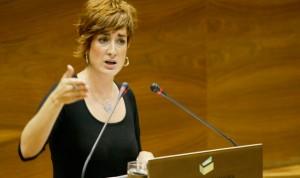"""""""Hay total contradicción del Constitucional en la atención a irregulares"""""""