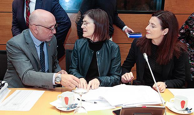 Carcedo aleja la posibilidad de un MIR extraordinario en 2019