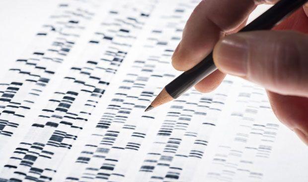 Al menos el 75 por ciento del genoma humano sería 'basura'