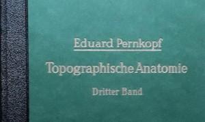 """Anatomía de Pernkopf: el libro de Medicina """"apestado"""" por su secreto nazi"""