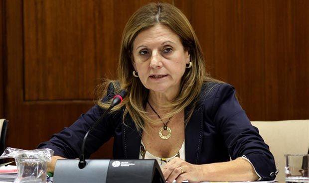 Andalucía aprueba nuevos temarios para las pruebas de acceso al SAS