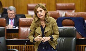 Andalucía, pionera en medir la eficacia de la bomba de insulina en diabetes
