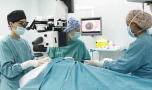 Aragón implanta el programa de donación de órganos en asistolia controlada