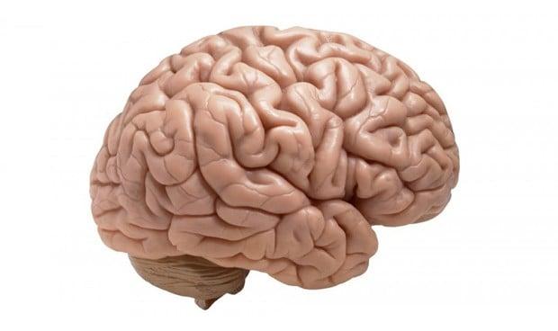 Asocian una región superficial del córtex con el riesgo de TDAH