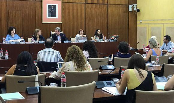 Atropello de cifras en la Comisión de Salud del Parlamento andaluz