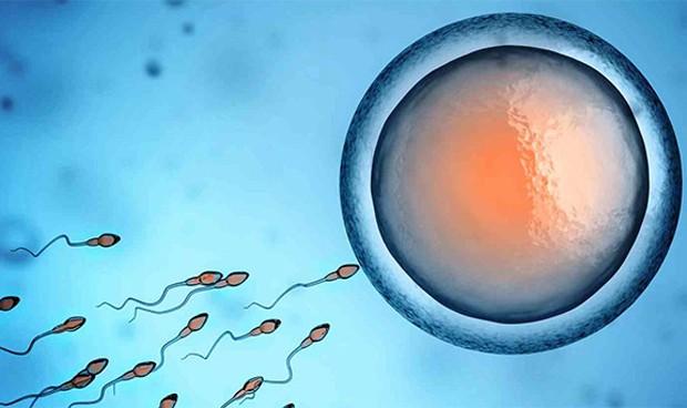 Aumenta la polémica del semen erróneo: afectadas otras 84 parejas