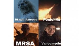 Bacterias y antibióticos en Juego de Tronos: Arya es la vancomicina