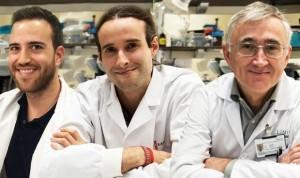 Un reloj epigenético predice la evolución de los pacientes con cáncer