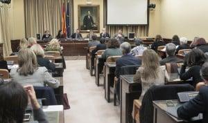 Carcedo acompaña a Ana Prieto en la Comisión de Sanidad del Congreso
