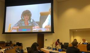 Carcedo lleva a la ONU su Plan Nacional de Salud y Medioambiente