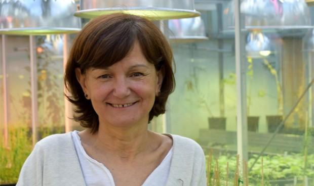 Una bióloga, nueva directora general de Planificación de la Investigación