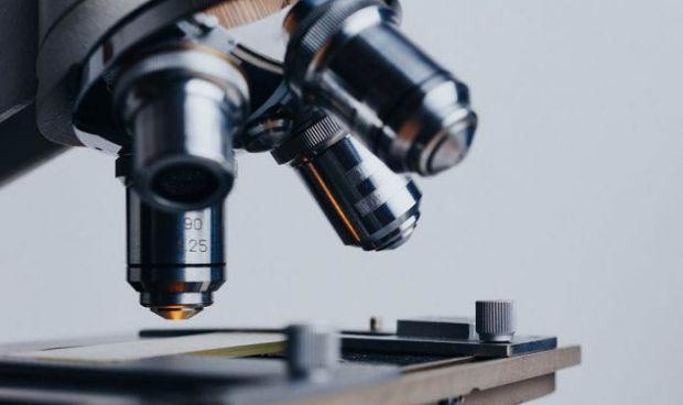 Científicos descubren los genes que contribuyen al desarrollo del TDAH