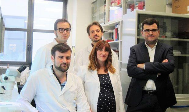 Científicos españoles abren la puerta a la inmunoterapia en cáncer de colon