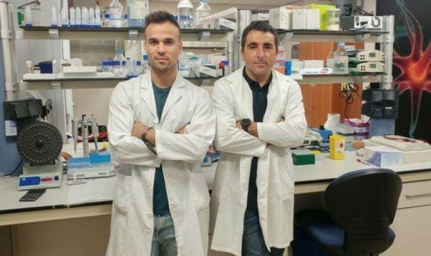 """Científicos españoles descubren un tratamiento """"prometedor"""" para el ictus"""