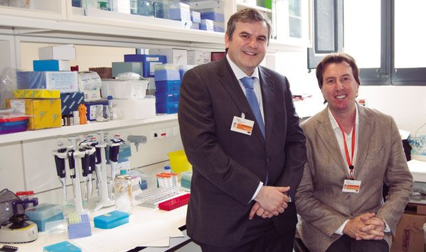 Científicos españoles hallan una terapia frente a la metástasis cerebral