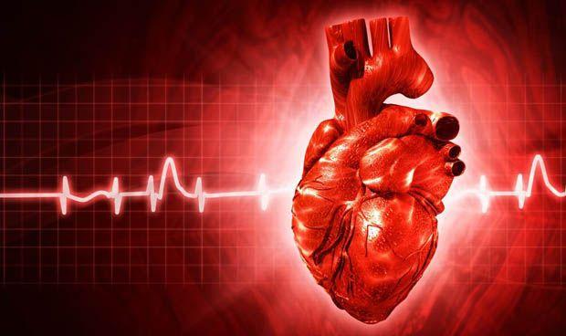Científicos españoles trabajan para crear el primer 'corazón virtual'