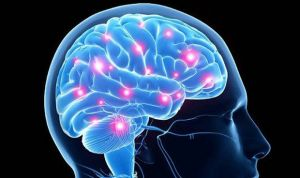 Científicos exploran la contribución genética al riesgo de suicidio