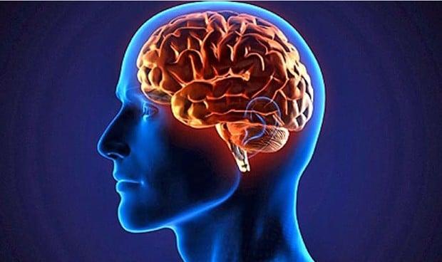 Cinco regiones del cerebro son más pequeñas en las personas con TDAH