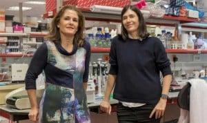 CNIO y UAB crean su propia compañía para patologías del envejecimiento