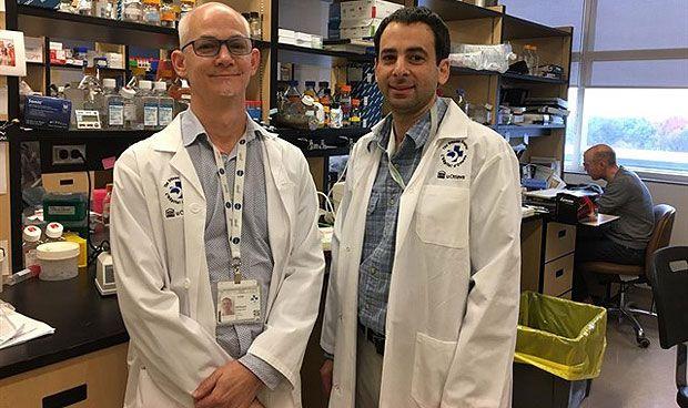 Combinación prometedora para la leucemia resistente a quimioterapia
