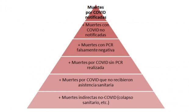 Coronavirus: Así explica un epidemiólogo cómo leer las curvas del Covid-19