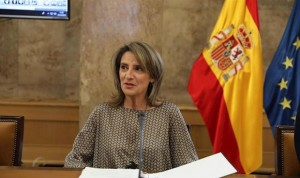 "Coronavirus: desescalada por provincias ""flexible"" en algunos territorios"