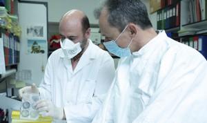 Coronavirus: España ya tiene candidato a vacuna que ensayará con animales