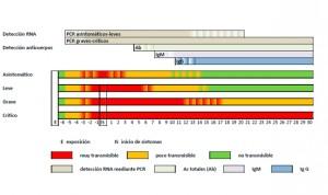 Coronavirus: Sanidad normativiza la interpretación de test rápidos y PCR