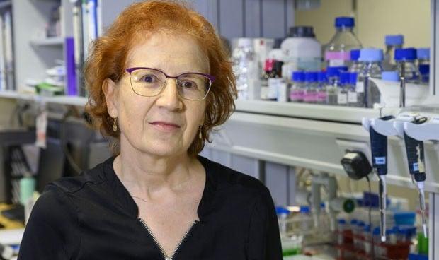 """Coronavirus   Margarita Del Val: """"Habrá tratamientos antes que una vacuna"""""""