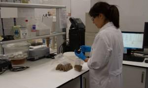 """Covid-19: 600 nuevos tratamientos """"potenciales"""" identificados en España"""