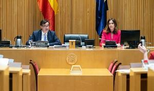 """Covid-19: Illa afirma que España solo tiene """"escasez"""" en guantes de nitrilo"""