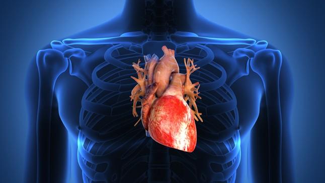 El efecto del Covid-19 en el corazón