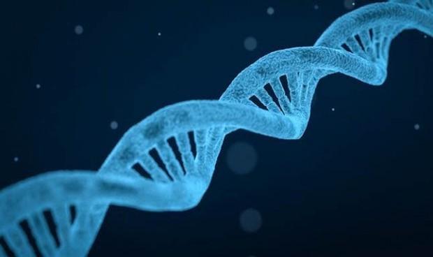Covid-19: la genética determina la gravedad de la enfermedad