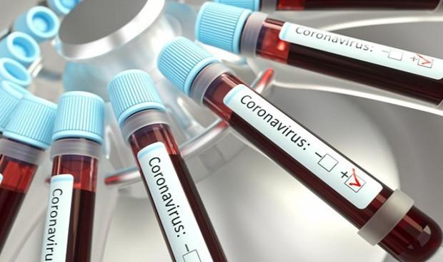 Los anticuerpos contra el Covid generan hasta siete meses de inmunidad