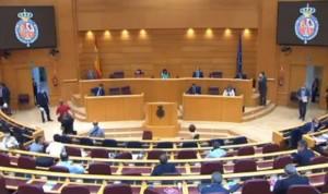 El Senado insta a reforzar la sanidad pública tras la crisis del Covid-19
