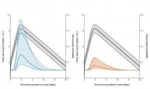 La probabilidad de transmisión alcanza su máximo al inicio de síntomas
