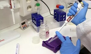 Covid-19 vacuna: Moderna estima comenzar su fabricación masiva en noviembre