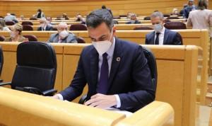 """Sánchez anuncia """"20 millones"""" de personas vacunadas de Covid antes de julio"""