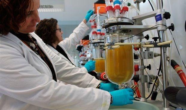 Crean un intestino artificial que comprueba la eficacia de los fármacos