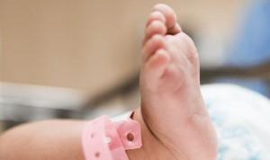 Crean un útero artificial para salvar a bebés extremadamente prematuros