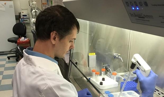 Crean una prueba que en 5 horas descubre si un tumor de mama es maligno