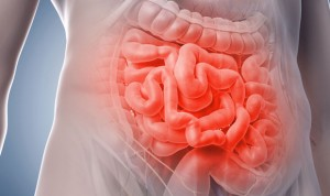 Cuatro de los siete cánceres más comunes afectan al aparato digestivo