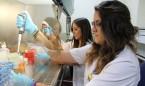 Desarrollada una terapia que frena la enfermedad renal causada por diabetes