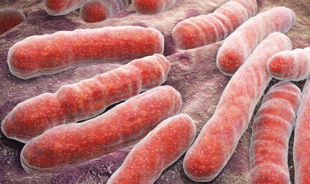Desarrollan una nueva estrategia de detección temprana de la tuberculosis