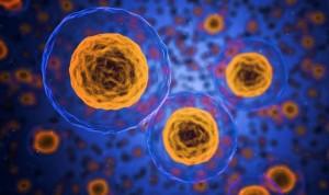 Desarrollan unos microdispositivos para discriminar las células tumorales