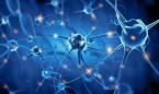 Describen nuevos biomarcadores de ELA para el diagnóstico precoz