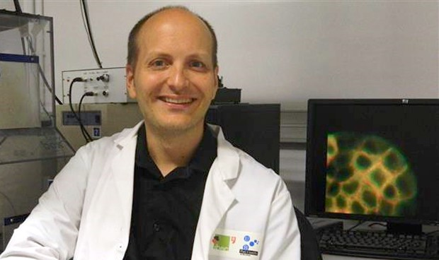 """Descubren cómo células cancerosas """"secuestran"""" a sanas y forman metástasis"""
